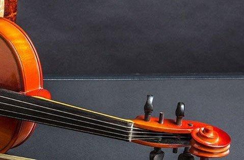 Заказать музыкальную экспертизу, оценку музыкальных инструментов