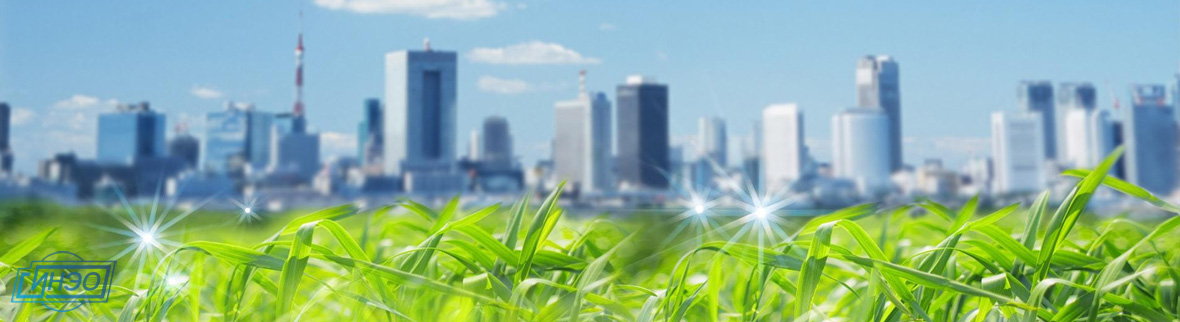 Экологическая экспертиза в СПб: документации, проекта, квартиры. Экологическая оценка окружающей среды